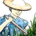 锄草 weeding