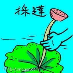 採莲 lotus flower,lotus picking