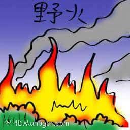 野火 wildfire